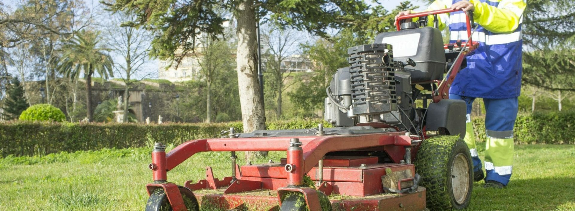 Gardener mowing the grass with engine powered mower at urban park. This is a mid-size walk-behind rotary model