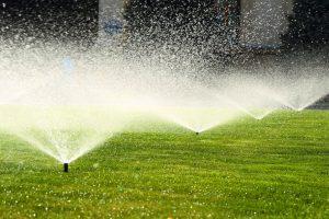 Summer Irrigation Practices